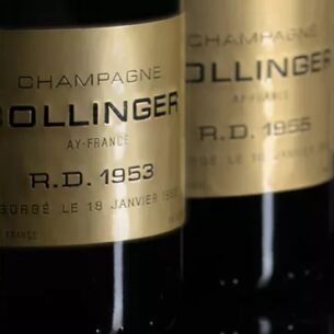 Immersion Bollinger